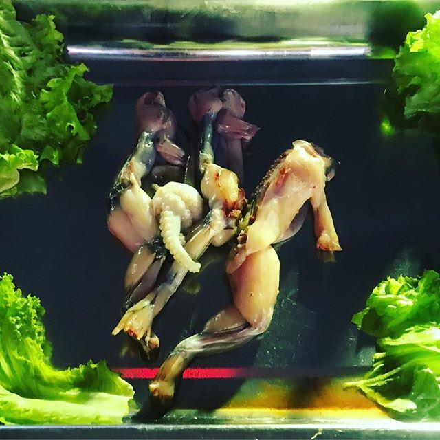 frog meat saigon vietnam