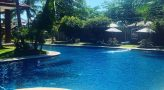 swimming pool at wild orchid