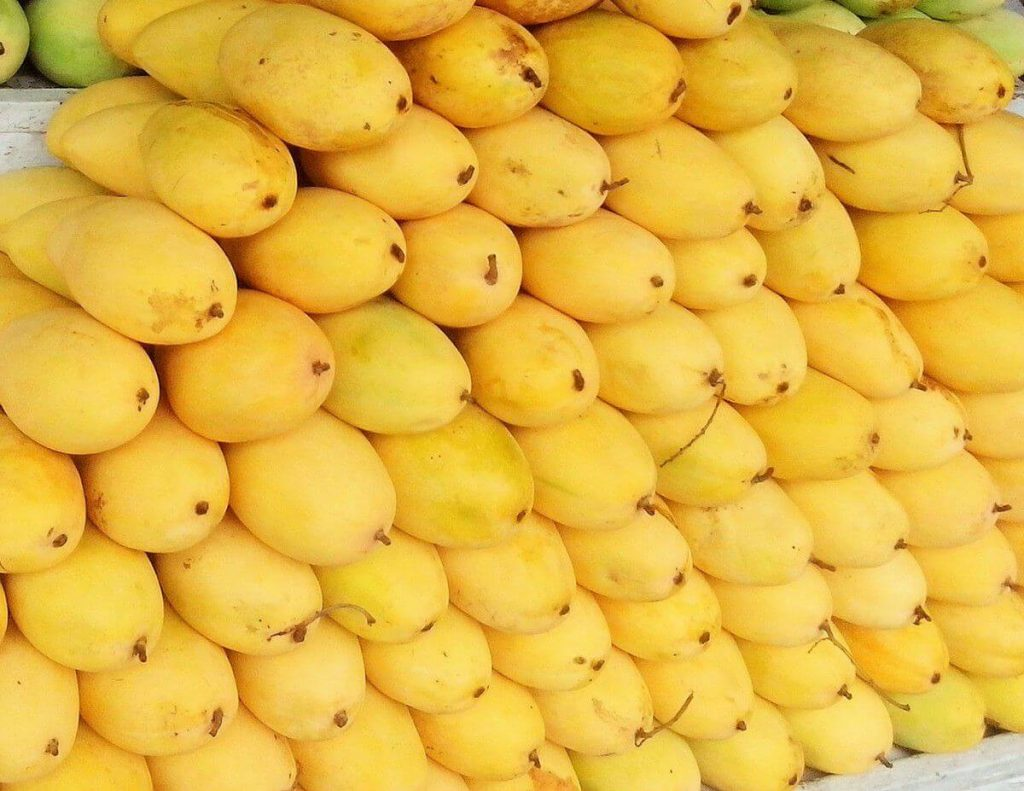 mangoes in the philippines - vegan in the Philippines