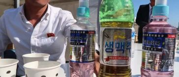 North Korean Potato Soda