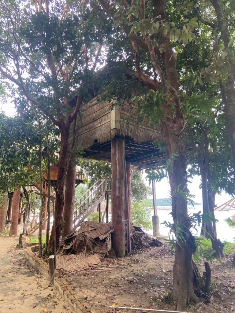 Treehouse in Kohrong
