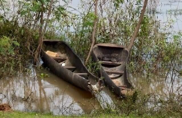 Perahu yang terbuat dari Pohon Palem